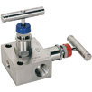 Panam Stainless Steel Valves